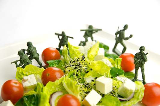 Salad Surrounded by Plastic Army Men - Food Security Business Protection Specialists