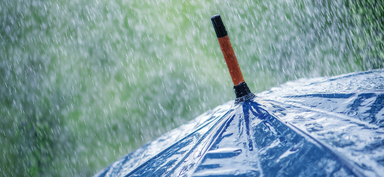 Blue Umbrella in Rain Business Protection Specialists