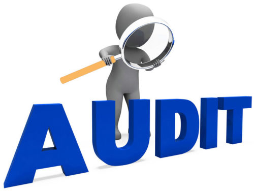 Generic neutral human image holding a magnifying glass reading the aord Audit - Business Protection Specialists