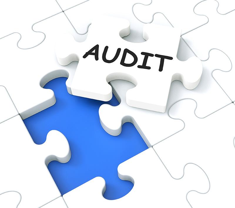 Security Audit Vs Assessment